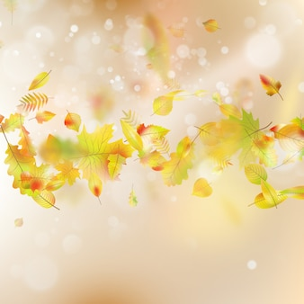 Herfstbladeren thema achtergrond.