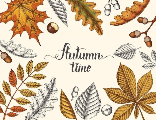 Herfsttijd, hand getrokken herfst doodle en gekleurde vergeelde bladeren en handgemaakte belettering. gravure illustratie.