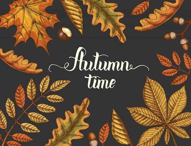 Herfsttijd, met de hand getekende herfstkleurig vergeelde bladeren en handgemaakte belettering. gravure illustratie.