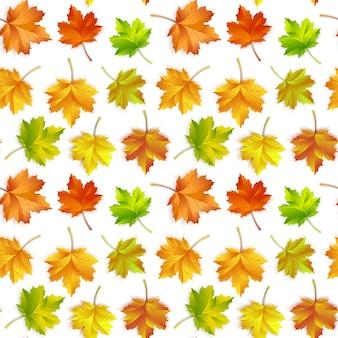 Herhalend patroon van esdoorn herfstbladeren