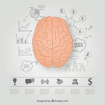 Hersenhelften grafische