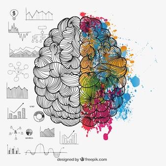 Hersenhelften in doodle stijl