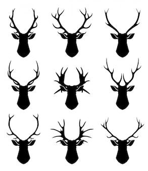 Herten hoorns, rendieren hoofden