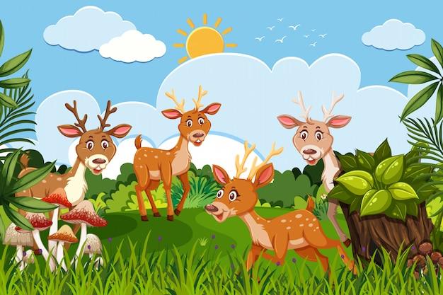 Herten in jungle scene