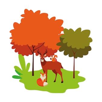 Hertenvos en eekhoorndieren in het bos