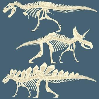 Het beeld van het skelet van de dinosaurus