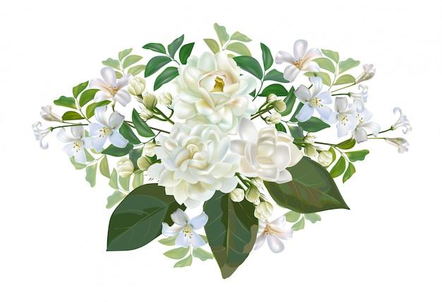 Het boeket van de jasmijnbloem op wit wordt geïsoleerd dat