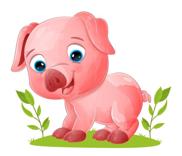 Het gelukkige varken kruipt met de voeten in de illustratietuin