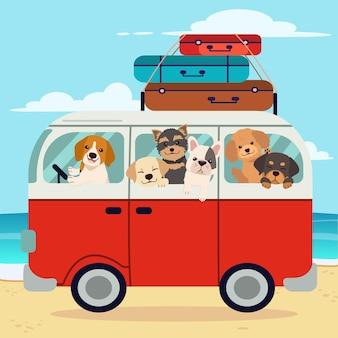 Het karakter van een schattige hond en vrienden in de auto en op het strand