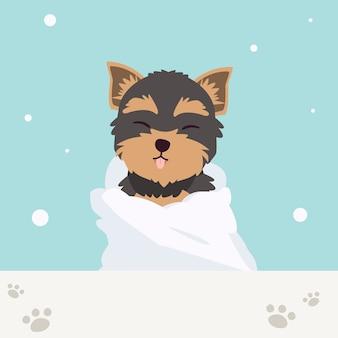 Het karakter van een schattige yorkshire terriër draagt handdoek met veel zeepbellen in vlakke stijl. illustation over het verzorgen van huisdieren