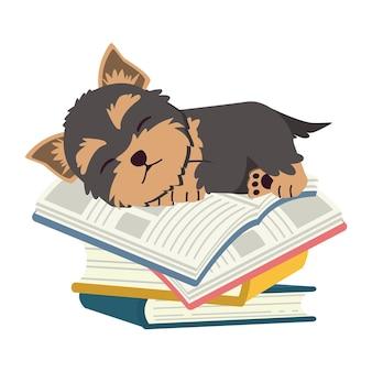Het karakter van een schattige yorkshire terrier-hond die op een stapel boeken slaapt