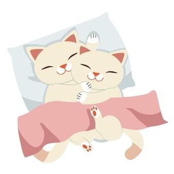 Het karakter van kat die op het witte hoofdkussen slapen