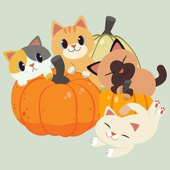 Het karakter van schattige kat en vriend zitten en spelen met een pompoen.