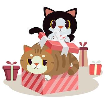 Het karakter van schattige kat in de geschenkdoos met vlakke stijl.