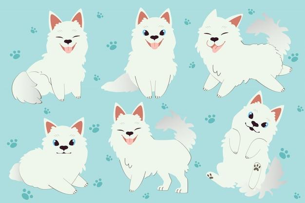 Het karakter van schattige samojeed hond zitten en staan.