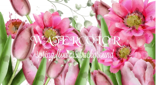 Het madeliefjebloemen van de lente en tulpen achtergrondwaterverf