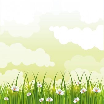 Het mooie landschap van gardenwithbloemen