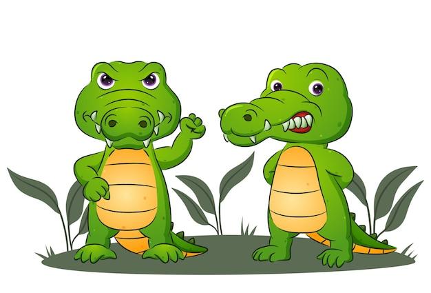Het paar krokodillen geeft de boze uitdrukking van illustratie