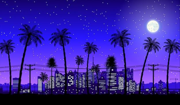 Het silhouet van de stadshorizon bij nacht