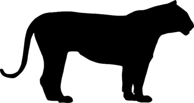 Het silhouet van een zwarte tijger die in een rustige pose staat
