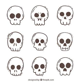 Het verzamelen van de hand getekende schedels