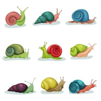 Het verzamelen van slakken van verschillende shell kleuren illustraties geïsoleerd op een witte achtergrond