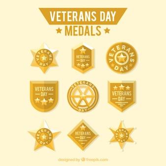 Het verzamelen van veteranen dag gouden medailles