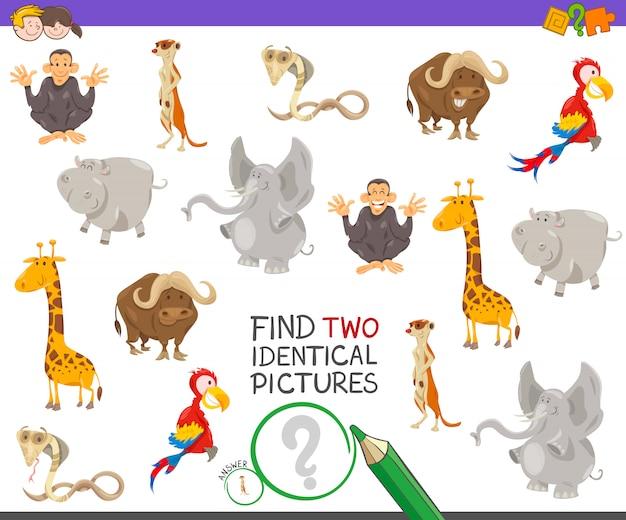 Het vinden van twee identieke foto's spel voor kinderen