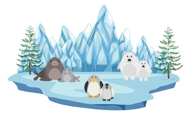 Het wild in het arctische land