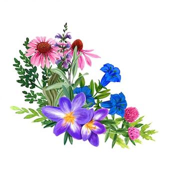Het wilde boeket van gebieds purpere bloemen, getrokken hand