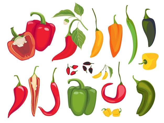 Hete pepers. mexicaans chili vers vegetarisch eten specerijen paprika cayennepeper exotische producten