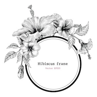 Hibiscus bloem frame hand tekenen vintage
