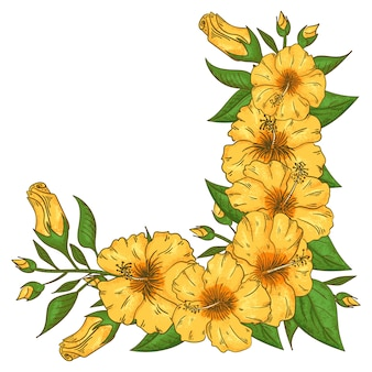 Hibiscus bloemen frame met bladeren