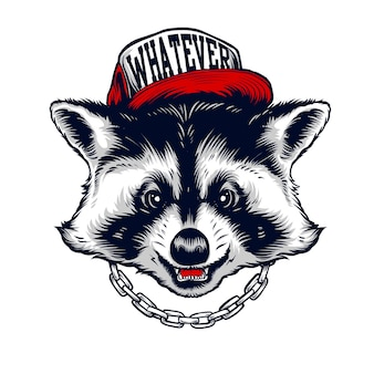 Hiphop racoon