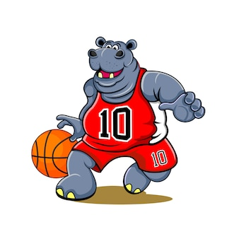 Hippo basketball