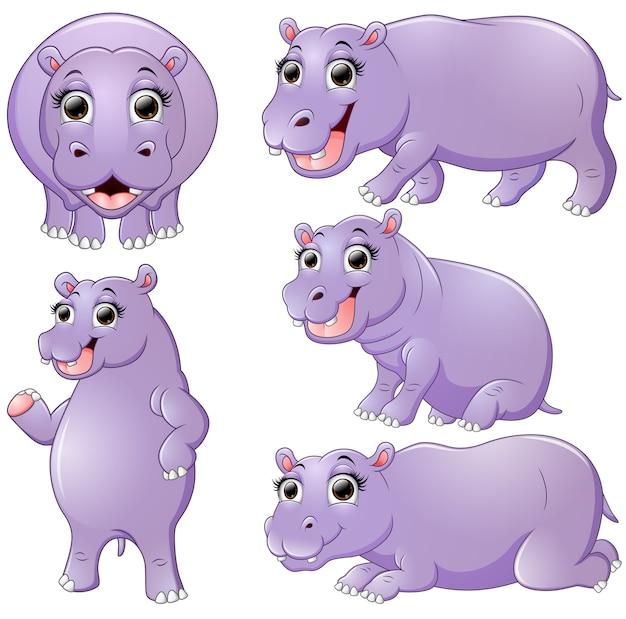 Hippo cartoon set collectie