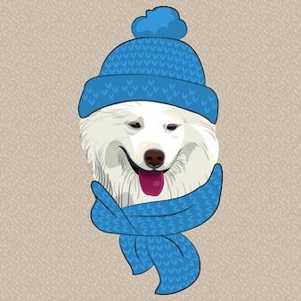 Hipster samojeed hond glimlach in een blauwe gebreide muts en sjaal