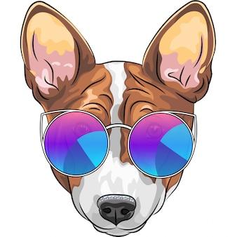 Hipster serieuze hond basenji in glazen