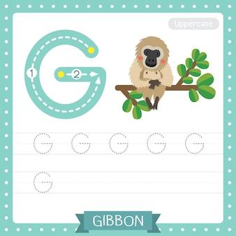 Hoe letter g in hoofdletters te schrijven. abc alfabet tracing oefenblad van gibbon zittend op tak voor kinderen die engels vocabulaire leren