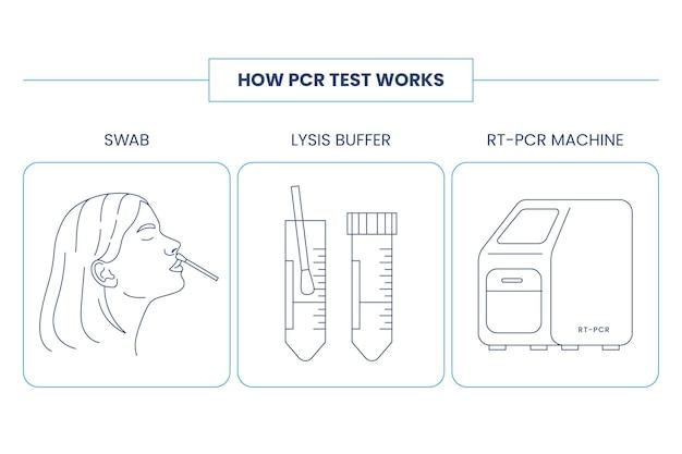 Hoe pcr-test werkt