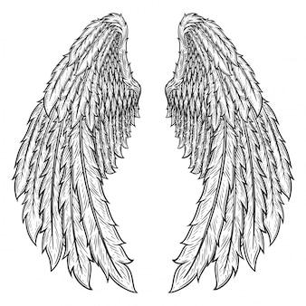 Hoek vleugels illustratie