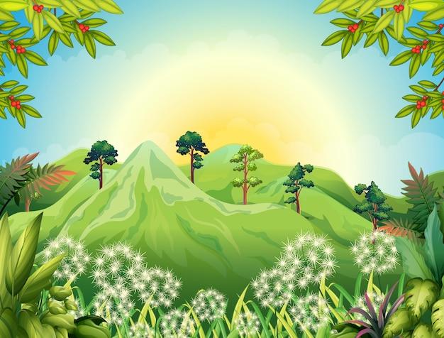 Hoge bergen in het bos