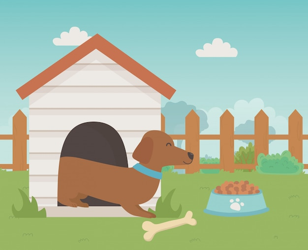 Hond cartoon ontwerp vector illustrator