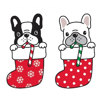 Hond franse bulldog in kerst sok