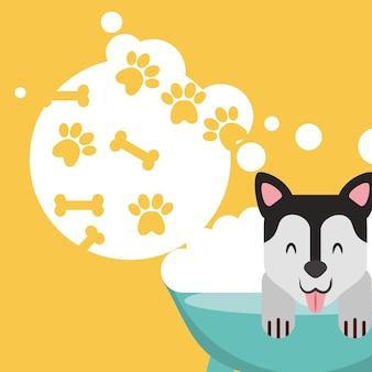 Hond in bad verzorgen bubbels poot been liefde huisdier binnenlands