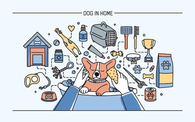 Hond in huis horizontale banner met huisdierenspeelgoed, medicijnen en puppymaaltijden