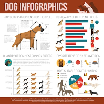 Hond infographics set