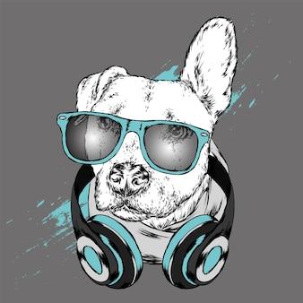 Hond met bril en koptelefoon