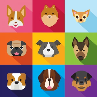 Hond pictogrammen