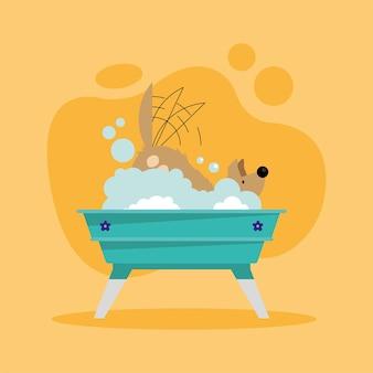 Hond schudt zich af in bad